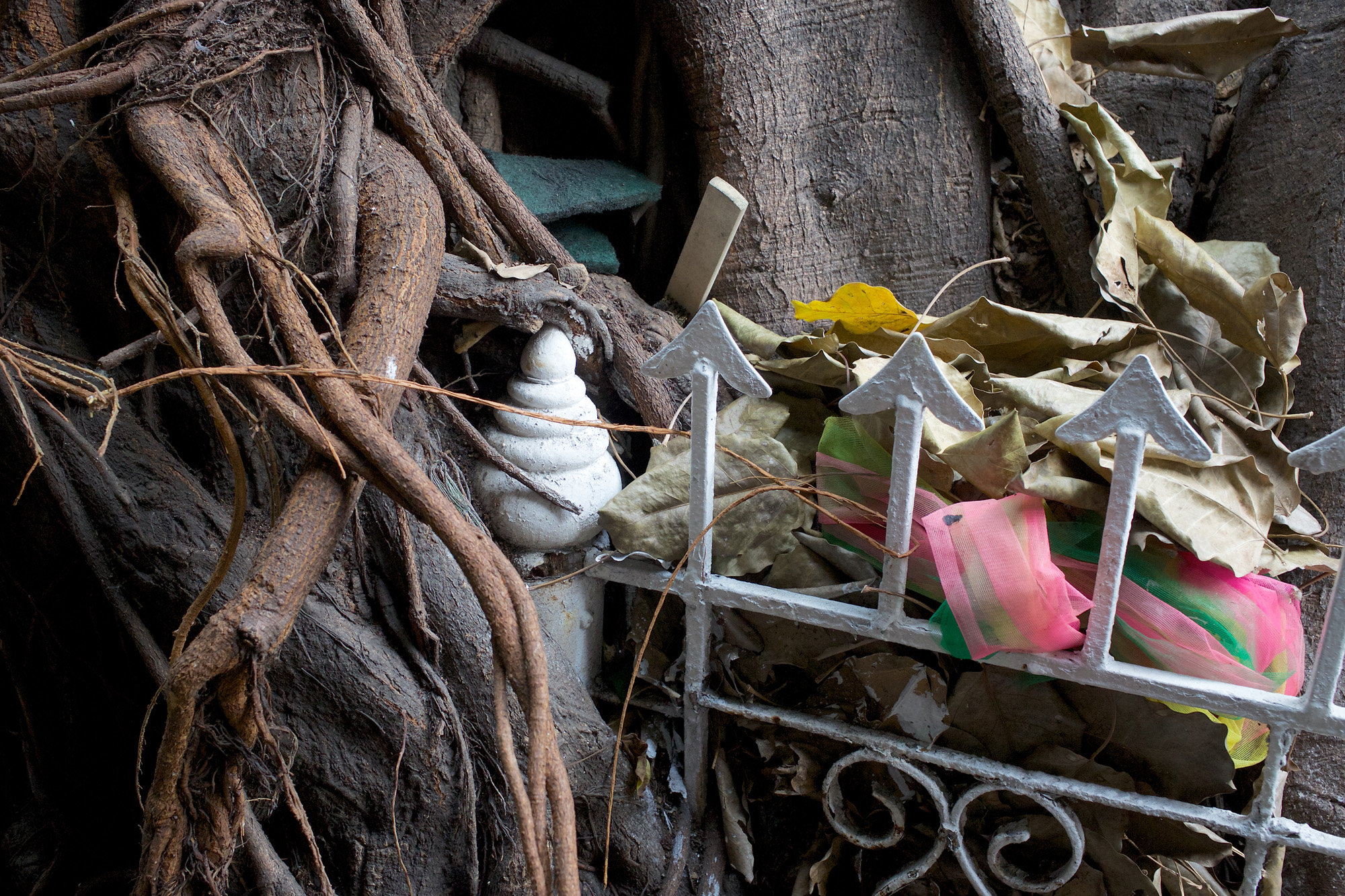 Finding Still Life Compositions on the Street